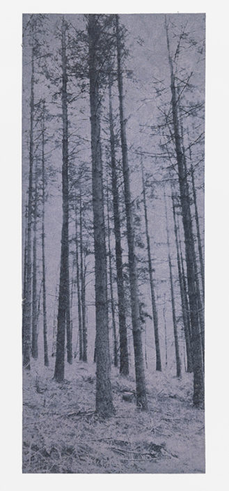 Ardennes, 2013, etching