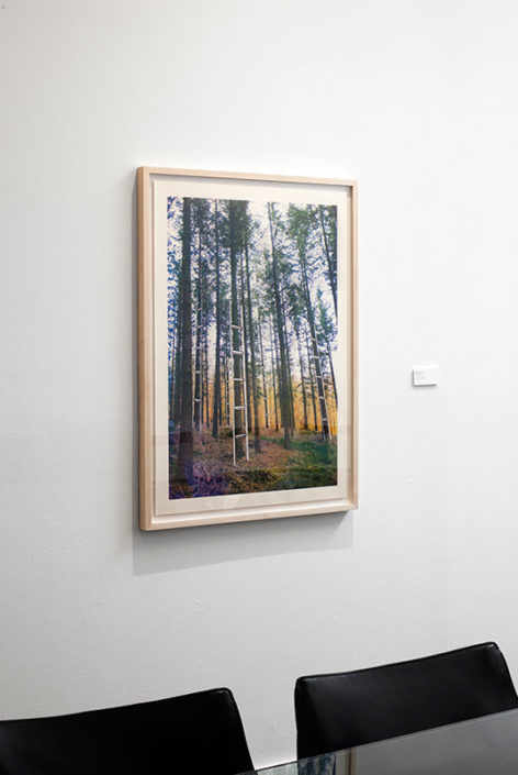 Ardennes, 2013, digital print, installation view at Artpace, San Antonio, Texas